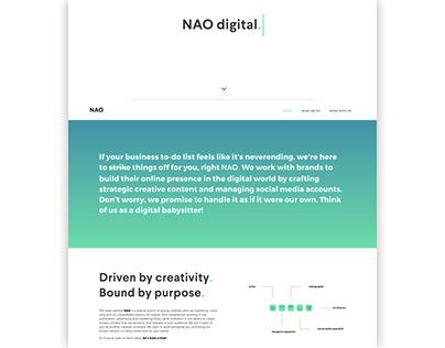 NAO Company Website