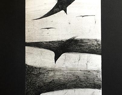 Crows/вороны