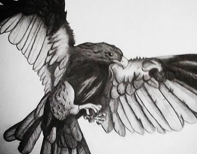 Desenhos, Pinturas e Ilustrações