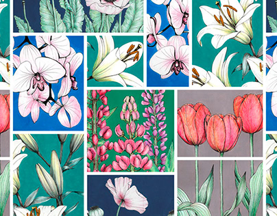 Flower Blocking Botanical Illustration