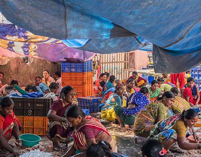 SASOON DOCKS - MUMBAI, INDIA