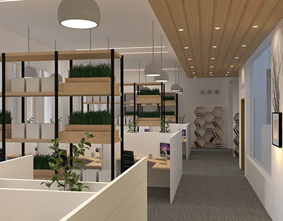 Biophilic Interior Design Office