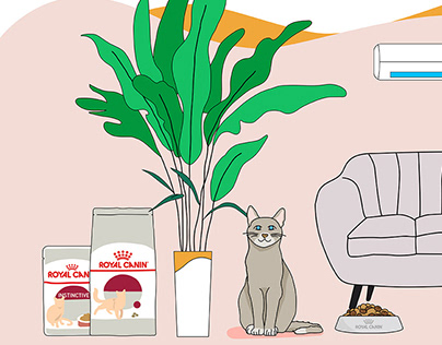 Royal Canin - Wet Food Promotional Video