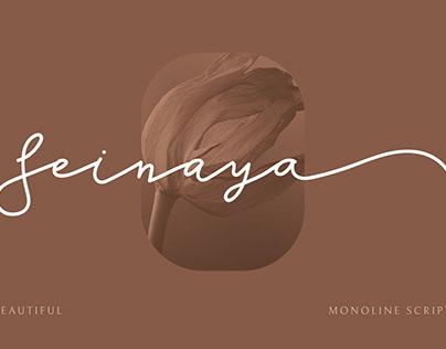 Seinaya - Monoline Script