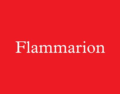 Éditions Flammarion - DA digital