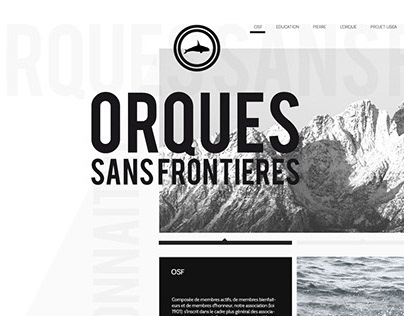 Web - Orcas Without Borders