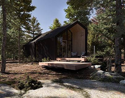 Tiny Cabin in Ontario