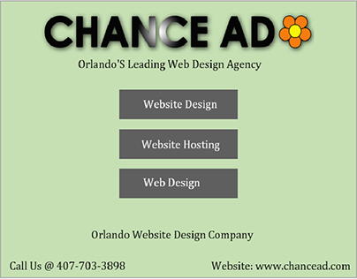 Experienced Website Design Company in Orlando