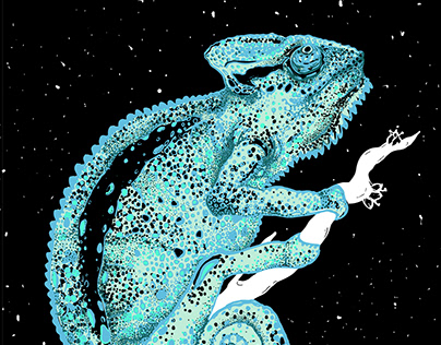 Chameleon Screenprint Project