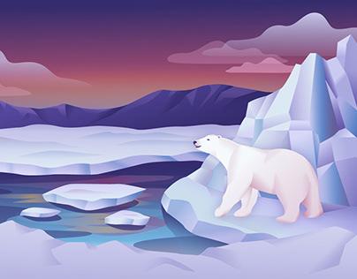 Polar Bear Illustration