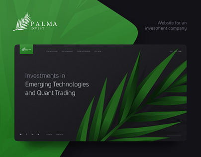Website for investment company
