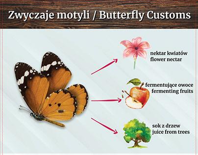 Butterfly Information Boards