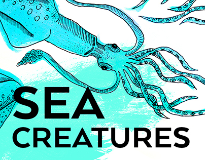 SEA CREATURES illustration series