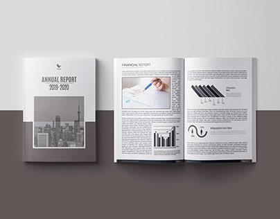 """ANNUAL REPORT - """"FALCONFLY"""""""