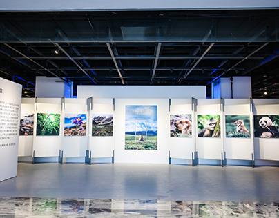 2020 Qualcomm Snapdragon art exhibition