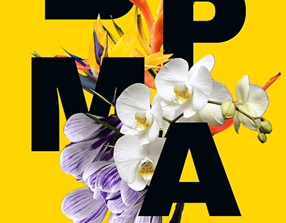 boPROMO Spring Graphics