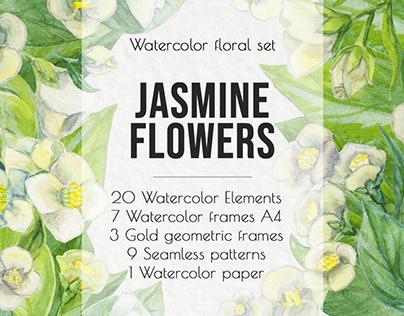 Jasmine flowers. Watercolor floral set.