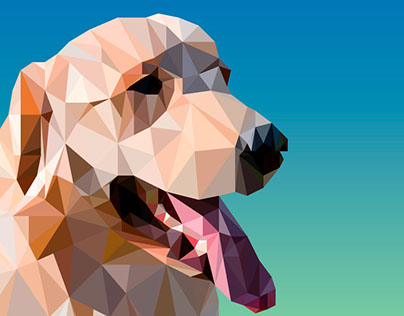 A little of low poly efect for my gorgeous pet
