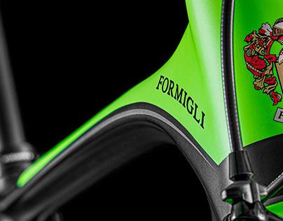 Formigli GTF project