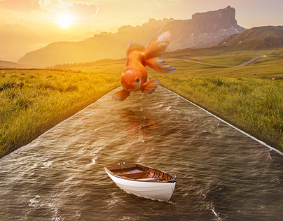 Fish and boat