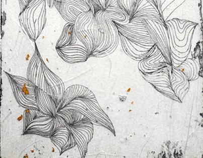 Blossom & Decay