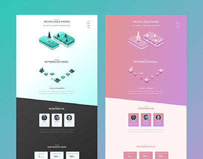 Business Strategy Website - 2 colors contept.