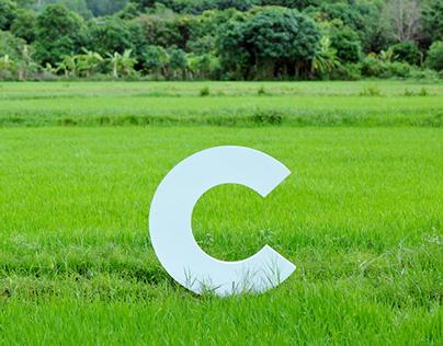 Rebranding Cánh Cam