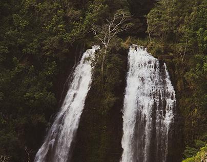 Kauai: Road Trip To Wailua and Opaeka'a Falls