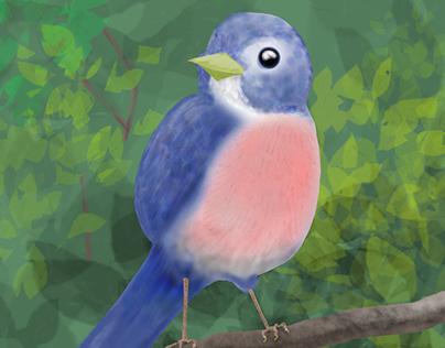 2020-09sep24-bluebird