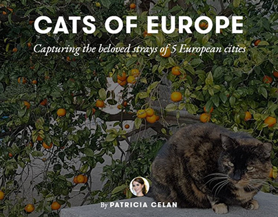Cats of Europe