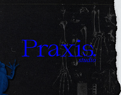 Praxis (Brand Project)