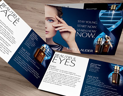 Estee Lauder Projects