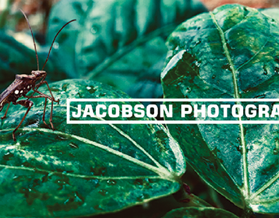Jacobson Photography