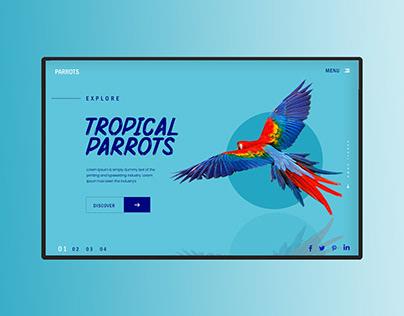 Tropical Parrots Website