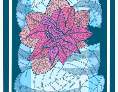 Camellia flower variation