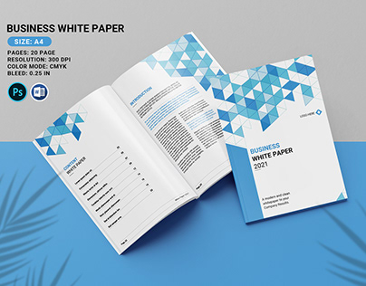 Business White Paper Brochure