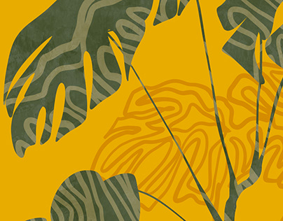 Illustrations & shapes of nature