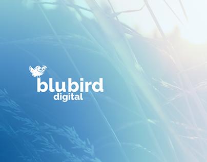 Logo & Identity: BluBird Digital