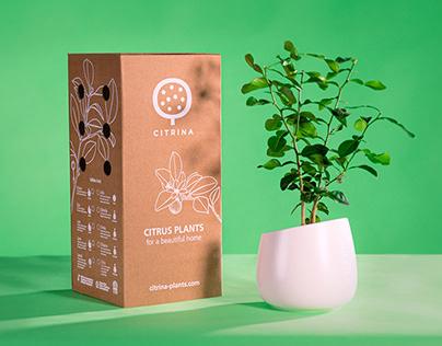 Citrina - Packaging