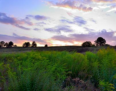 Evening Hills 2
