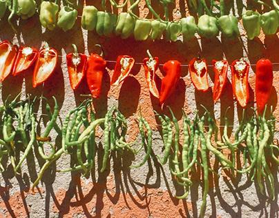 Pepper drying work