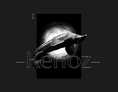 Kenoz