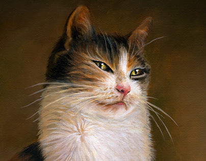 """""""Portrait of a Cat"""" Oil on Canvas. Private Collection"""