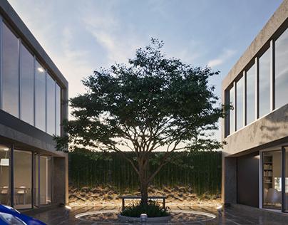 TreeHouse_