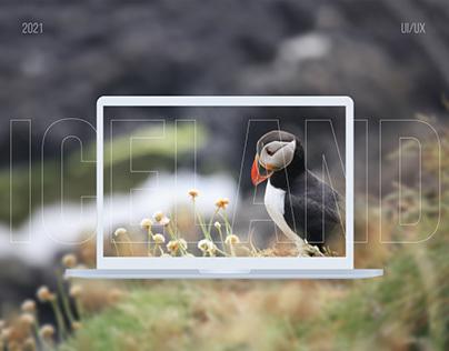 Iceland tour — website design