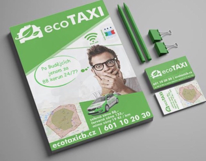 Graphic for ecoTaxi