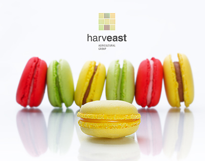 Packaging for Macaron Confection