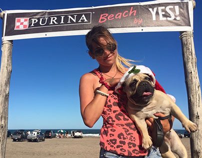 PURINA beach & Dog stop