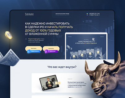 Fintelect. Investment master class landing page
