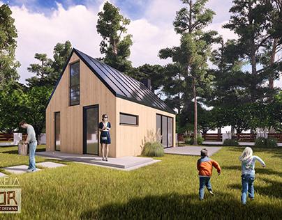visualization house for Drewtor company